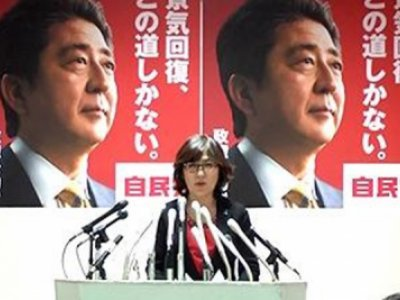 LDP Election Promises