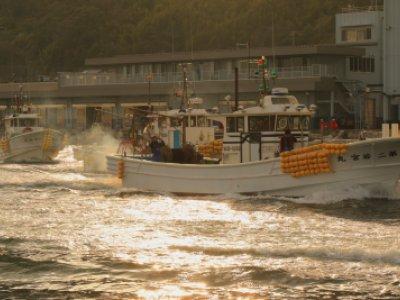 静岡県 由比漁港桜えび漁船の出港
